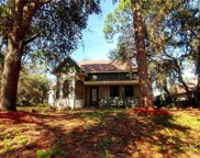 11437 Nellie Oaks Bend, Clermont image