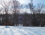 Lot 104 Hutchman Road, Adams Twp image