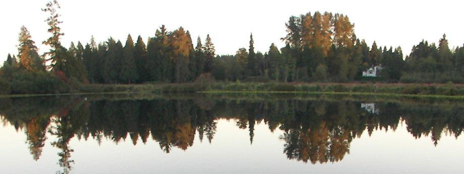 Larson Lake, Bellevue
