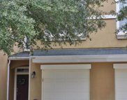 12287 BLACK WALNUT CT, Jacksonville image