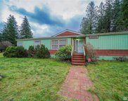 41530 164th St SE, Gold Bar image