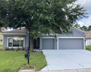 11238 Biddeford Place, New Port Richey image