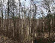 Lot Lot 579 Crooked Ridge Road, Gatlinburg image