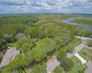 Tower View Drive, Minneola image