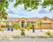 16132 Palmetto Hill Street, Clermont image