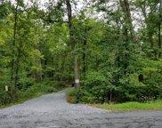 Rabbit Run  Road, Plattekill image