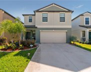 14212 Covert Green Place, Riverview image