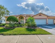 2643 Saddlewood Lane, Palm Harbor image