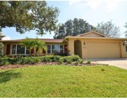 3101 Avocet Place, Safety Harbor image