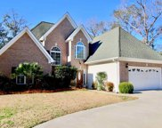 807 Mt Gilead Place Drive, Murrells Inlet image
