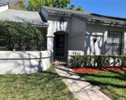3852 Goldfinch Court, Palm Harbor image
