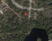 184 Pineberry Dr., Georgetown image