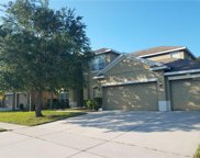 10143 Mallard Landings Way, Orlando image