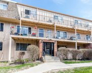2404 Algonquin Road Unit 13, Rolling Meadows image