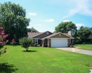 102 Oxford Drive, Meridianville image