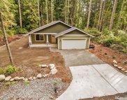 10704 106th St Ct, Anderson Island image