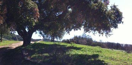 5 Asoleado Dr, Carmel Valley