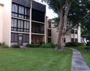 14130 Rosemary Lane Unit 3302, Largo image