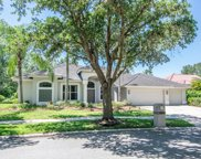 17820 Osprey Pointe Place, Tampa image