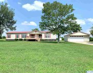 20842 Harris Loop Road, Elkmont image