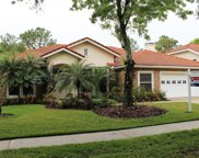 17947 Holly Brook Drive, Tampa image
