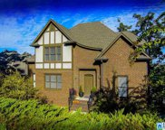 317 Delcris Ct, Homewood image