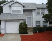 4051 Point Reyes Court, Orlando image