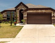 10816 Live Oak Creek Drive, Fort Worth image
