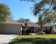 3346 Clover Leaf Lane, Land O Lakes image