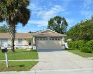15720 Greater Trail, Clermont image