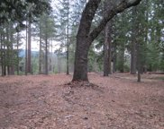 5753  BLUE MOUNTAIN  DR., Grizzly Flats image