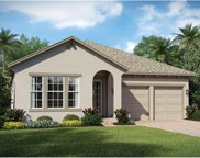 15497 Sweet Orange Avenue, Winter Garden image