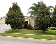 12126 Still Meadow Drive, Clermont image