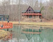 197 Andy Bear Hollow, Blairsville image