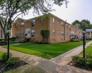 725 JORALEMON ST UNIT 132, Belleville Twp. image