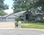 3903 Panther Creek Place, Valrico image