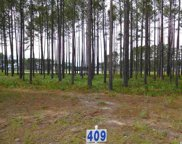 923 Fiddlehead Way, Myrtle Beach image