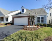 20464 ROSSES POINT COURT, Ashburn image