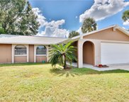 7504 Brookhaven Court, Tampa image