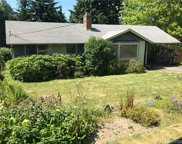 18515 38th Ave S, SeaTac image