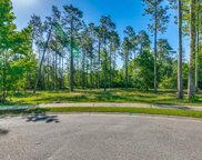 1001 Wigeon Drive, Conway image