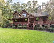 885 Sanie Rd, Odenville image