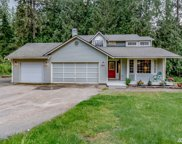 31435 NE 106th St, Carnation image
