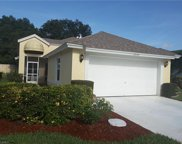 21174 Butchers Holler, Estero image