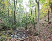 73.5 ACRES Dogwood Stand Rd Off, Hartford image