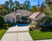 16420 Burniston Drive, Tampa image