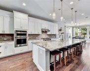 17217 Avion Dr, Dripping Springs image
