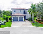 7970 NW 126th Ter, Parkland image