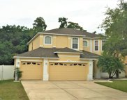 4912 Birch Stone Lane, Orlando image