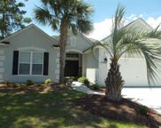 2901 Whooping Crane, North Myrtle Beach image